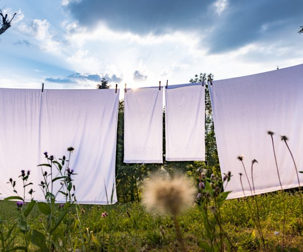 White Sheets Hanging on Clothesline on Summer Sunny Day Outdoors on Field